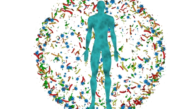 Why maintaining your Microbiome is critical to your health.